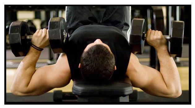 Uso de Fosfocreatina como fonte de energia para exercício físico