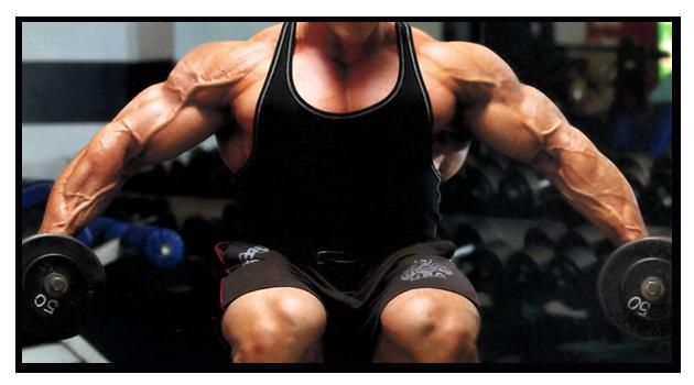 Músculo não sabe contar? Porque contar séries e repetições?