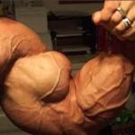 Em qual tamanho do Bíceps Braquial você acredita?