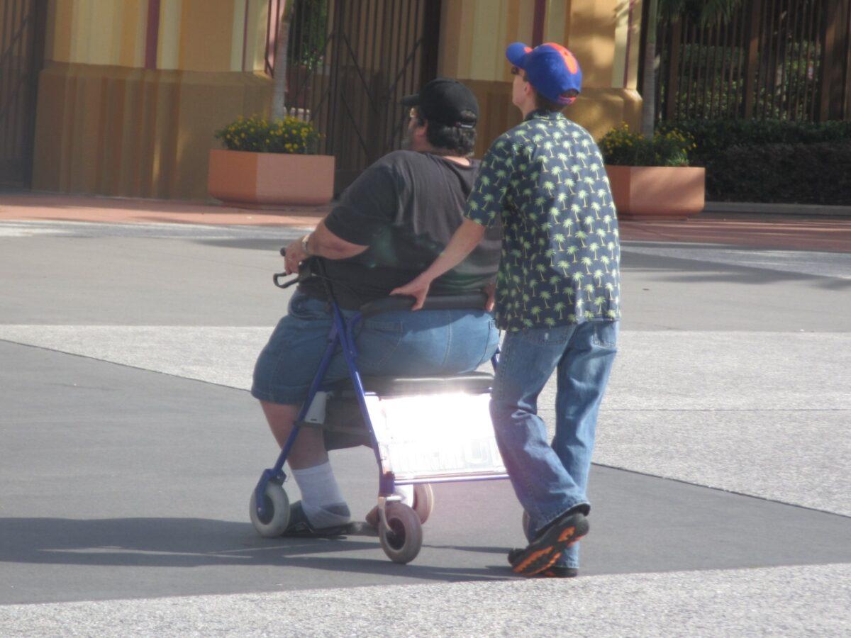 obesidade cláudia