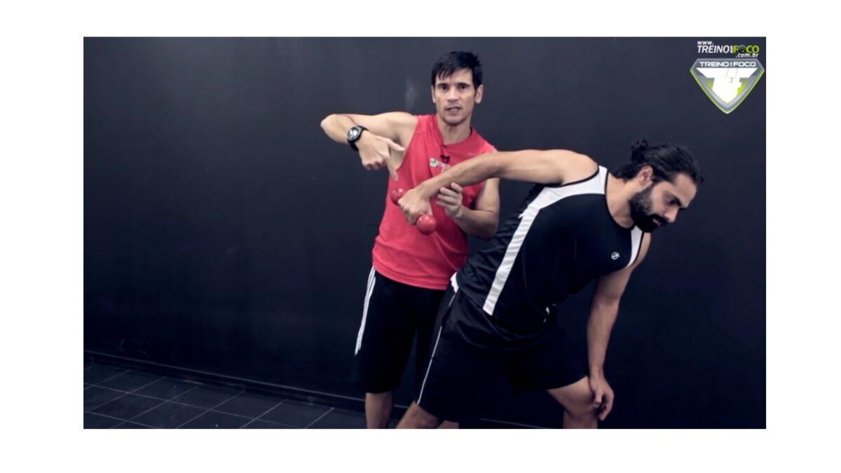 Treino_em_foco_tríceps_braquial_anatomia