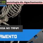 Cinesiologia no TRP 01 - Agachamento