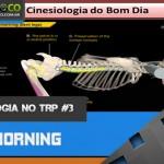 Cinesiologia no TRP 03 - Bom dia