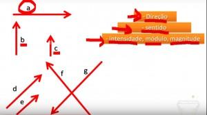 cinesiologia_vetor_vetores_aplicação