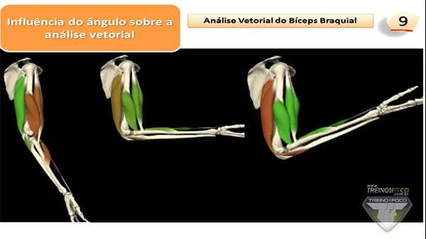 ângulos_análise_vetorial