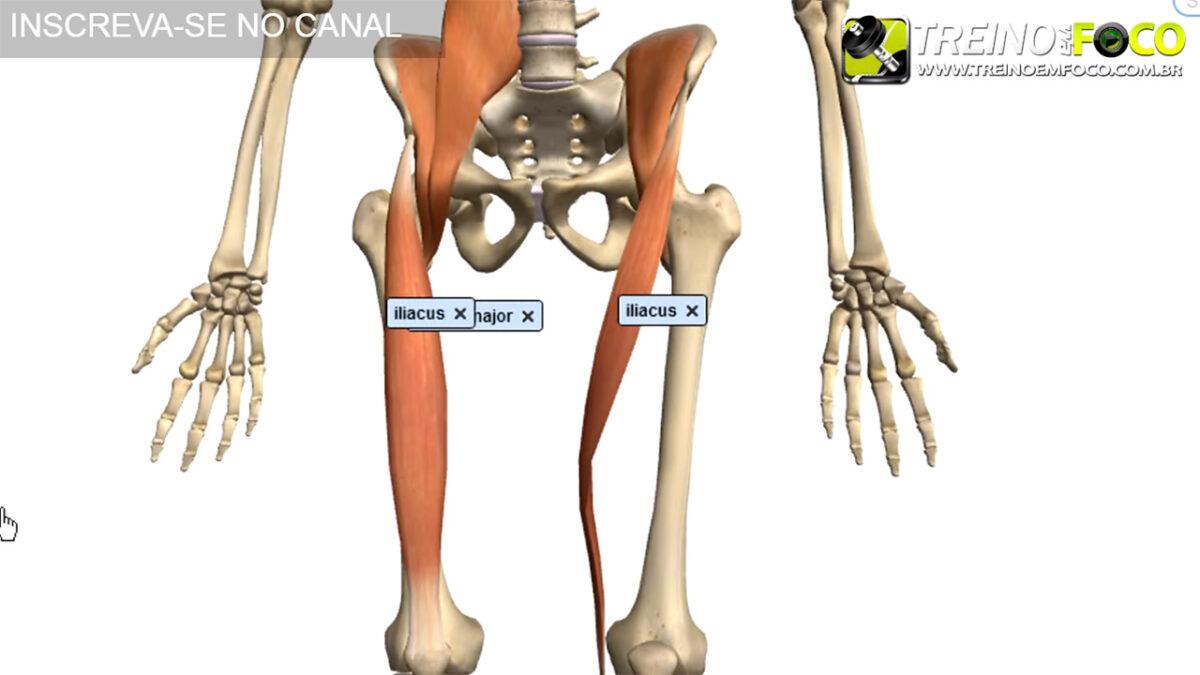 treino_em_foco_hipolordose_lombar_flexores_do_quadril_desvios_posturais