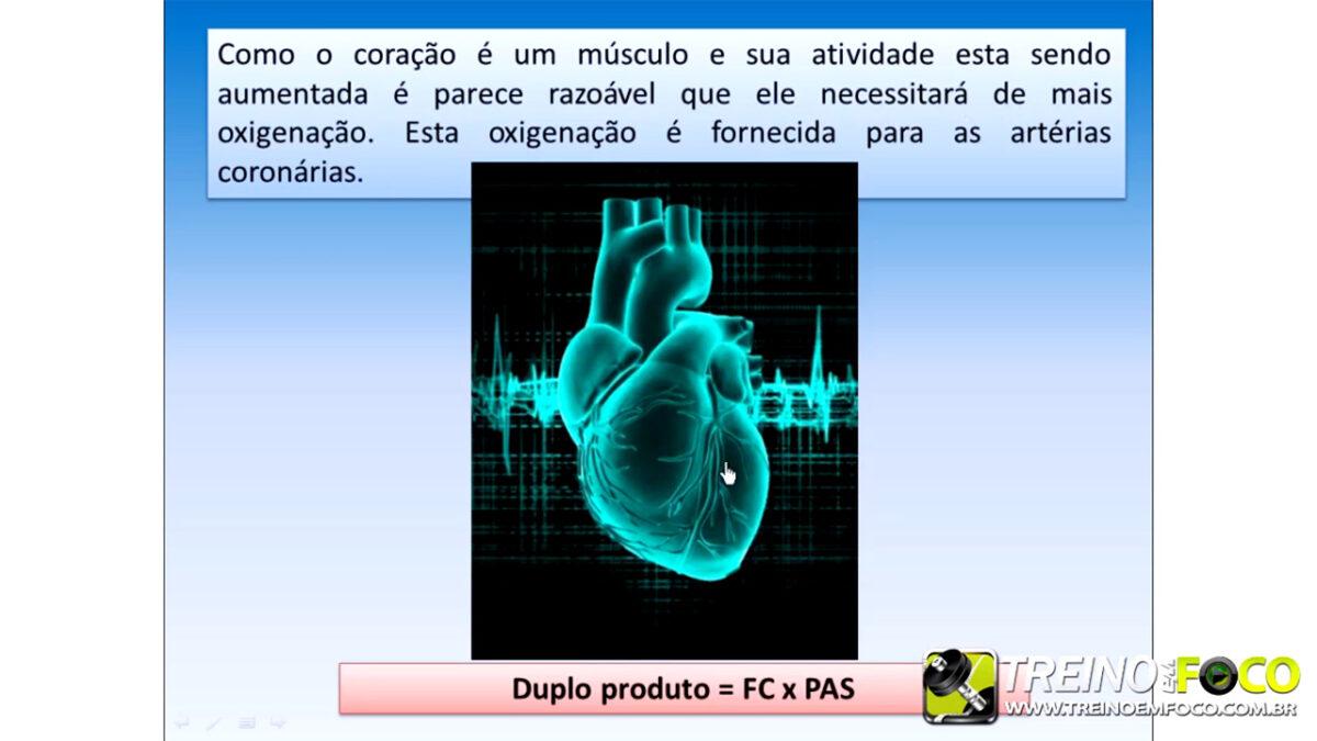 fisiologia_cardiovascular_treino_em_foco_débito_cardíaco_coração