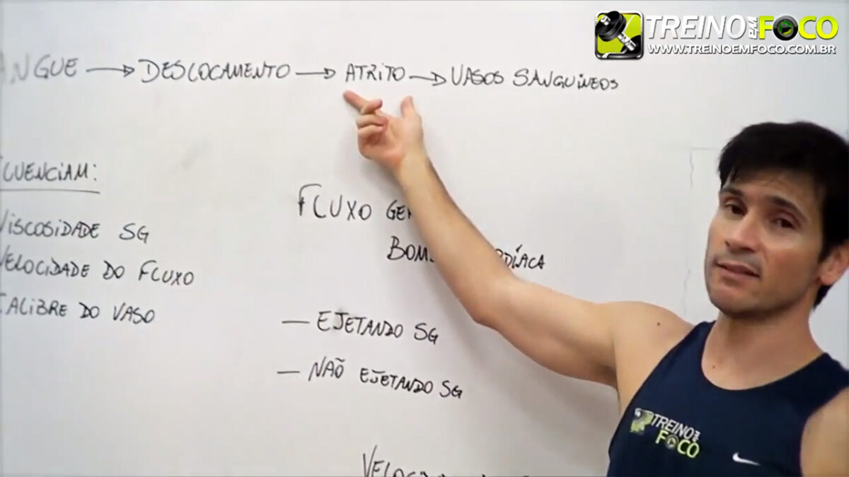 treino_em_foco_pressão_arterial_sistólica_diastólica_fisiologia