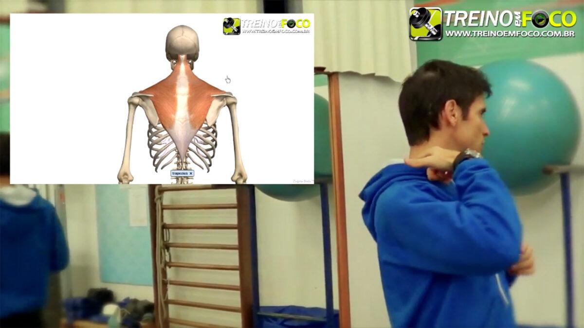 treino_em_foco_exercicios_alongamento_regiao_cervical_trapezio_superior