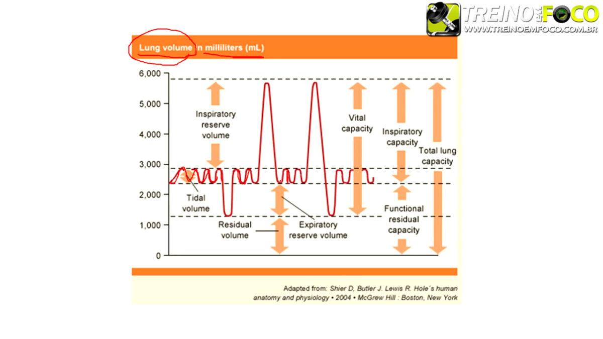 treino_em_foco_volumes_capacidade_pulmonares_ventilacao_pulmonar