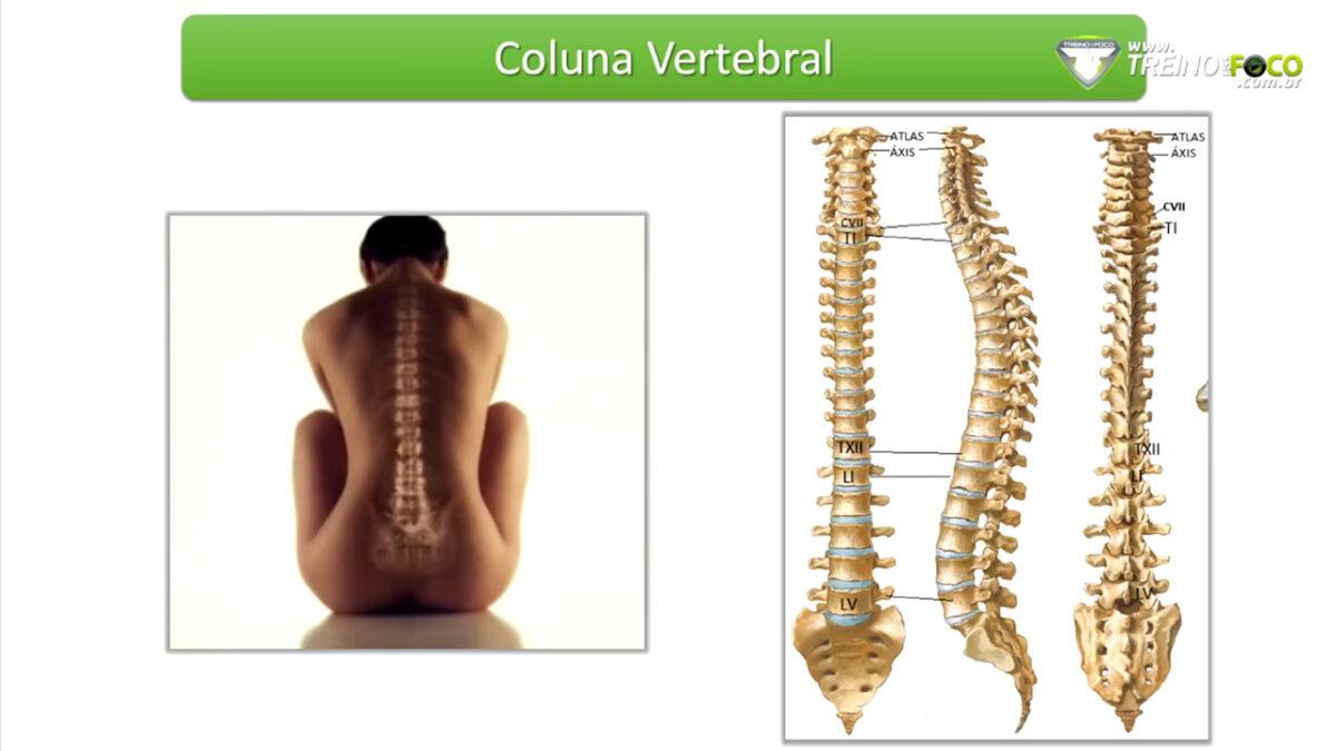 treino_em_foco_coluna_vertebral_lesao
