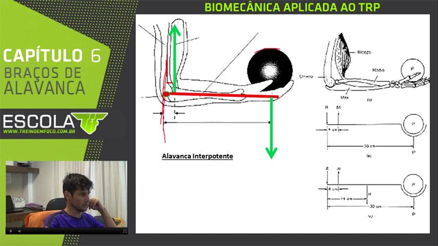 alavanca_interpotente_treino_em_foco_musculação