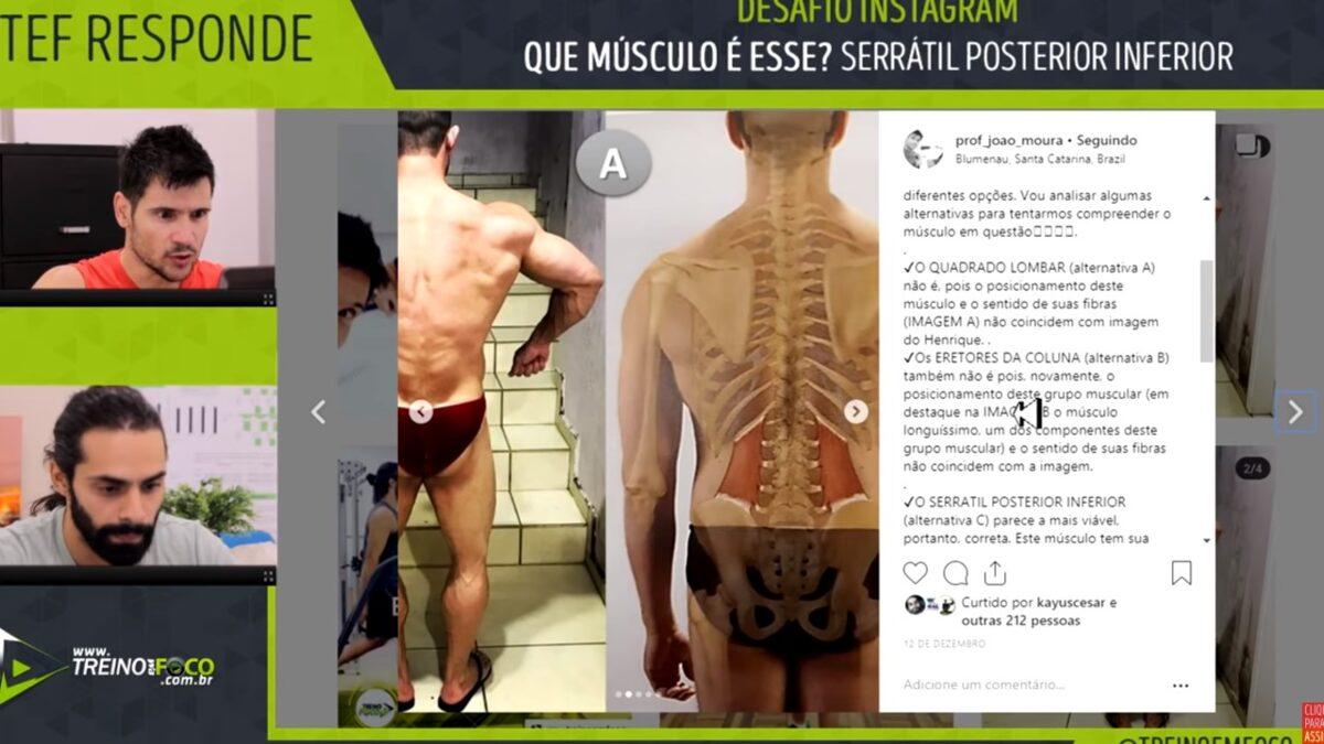 treino_em_foco_serratil_póstero_inferior