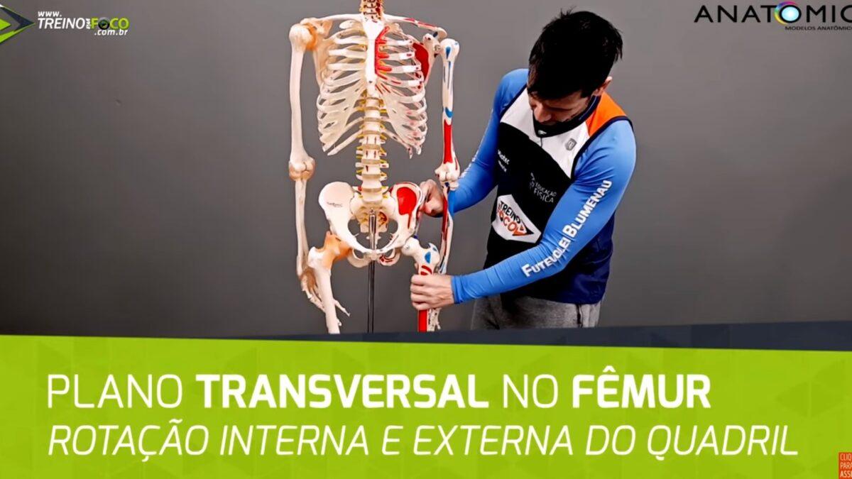 Treino_em_foco_plano_transversal_eixo_longitudinal